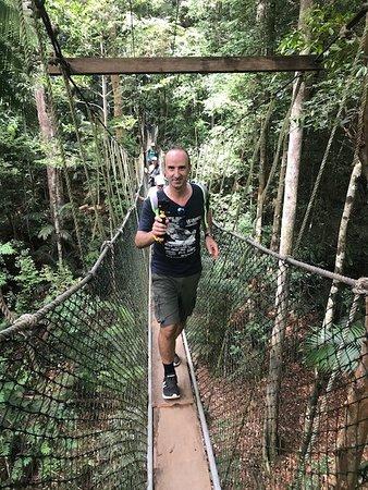Taman Negara National Park, Malaysia: mio marito con la actioncam