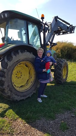 Bluebell's Dairy: 20180929_152233_large.jpg