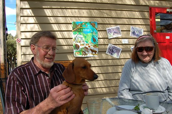 Westerway, ออสเตรเลีย: Enjoying our visit to The Possum Shed with Isla, the Dachshund!