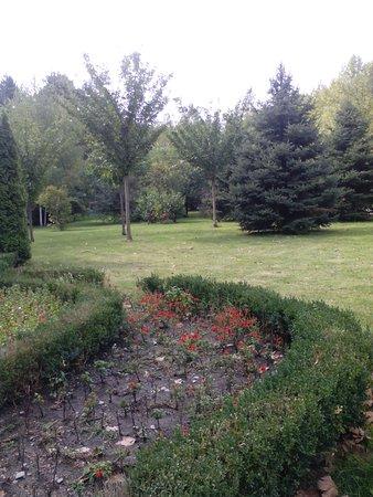Botanical Garden of Professor I. S. Kosenko: Поражает разнообразие деревьев.