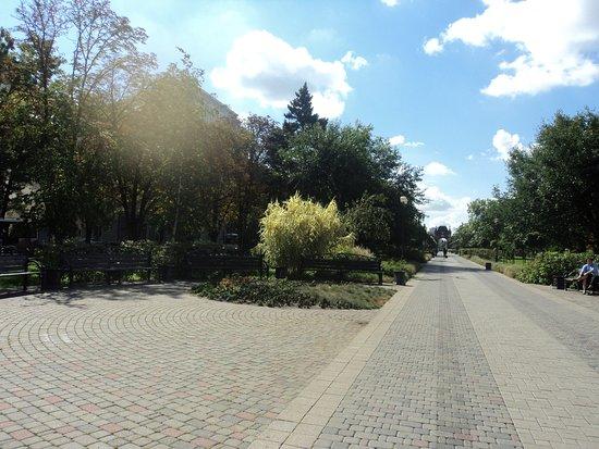 Botanical Garden of Professor I. S. Kosenko: Широкие, красивые аллеи вдоль деревьем.