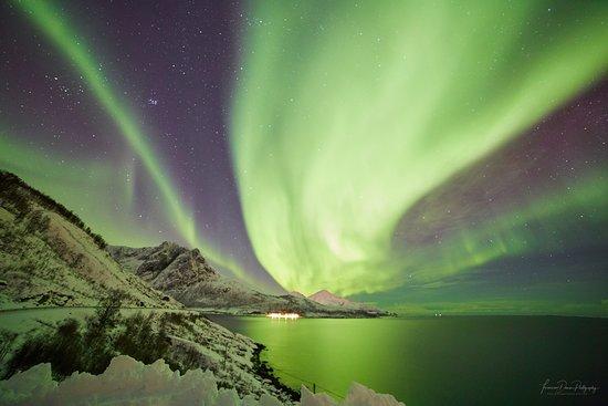 Nord-Lenangen, นอร์เวย์: Northern Lights at the Fjord
