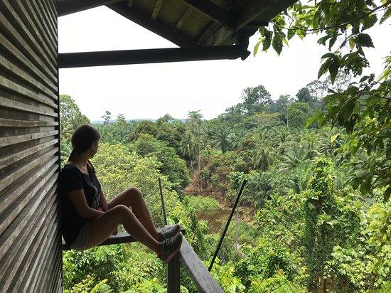Paganakan Dii Tropical Retreat: room