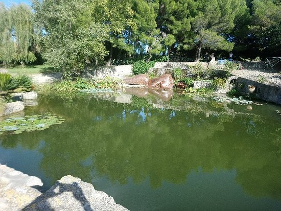 Servian, ฝรั่งเศส: DSC_0219_large.jpg