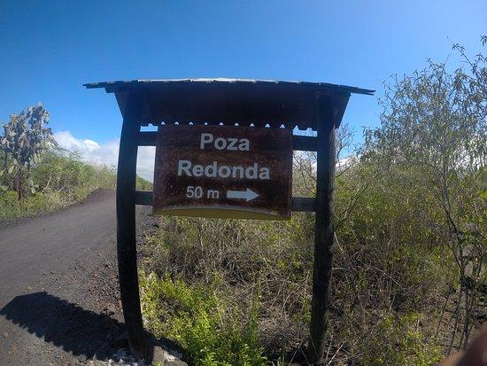 Puerto Villamil, Ecuador: placa