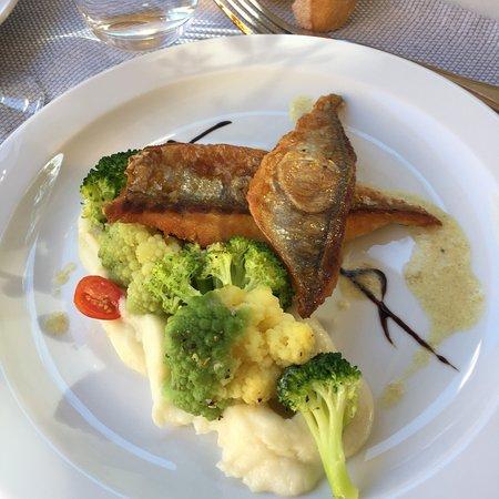 Annot, Frankreich: Tiramisu fruits rouges, filets de daurades, saumon etc etc tout est excellent. Ce petit Resto va
