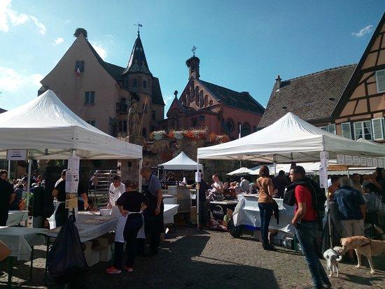 Le Chateau des Comtes d'Eguisheim