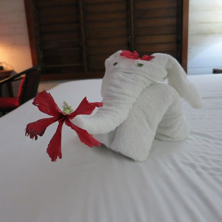 Foto Barefoot Cay Resort & Spa