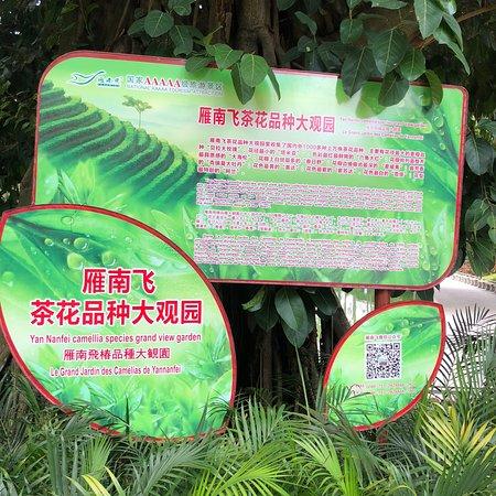 Mei County, China: photo5.jpg