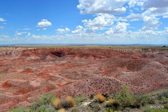 Painted Desert照片