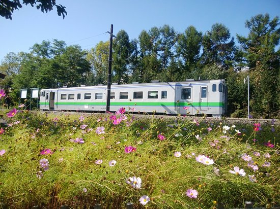 Shin Totsukawa Station