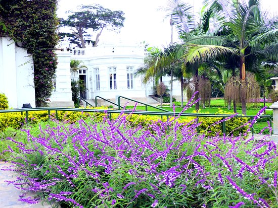 Museo Pedro de Osma: Flowers Brighten a Cloudy Day