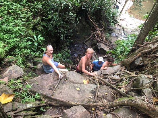 Unique Maui Tours Photo