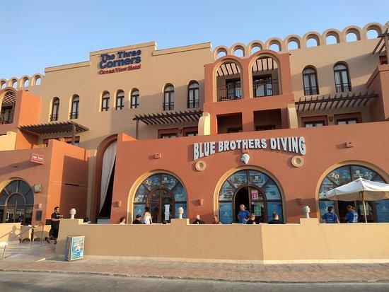 New Blue Brothers Diving Ltd.照片