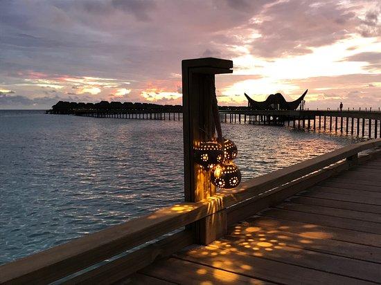 Joali Maldives: returning to the water villa