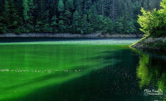 Tara National Park, Σερβία: Zaovine lake