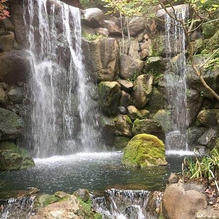 Anderson Japanese Gardens: photo0.jpg