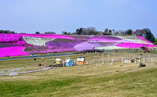 モザイクのような景色です picture of country farm tokyo german
