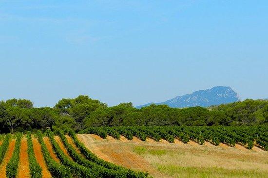 Full Day Pic Saint Loup Vin og Olive...