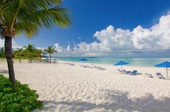 Dagstur til Bimini Bahamas fra Miami...