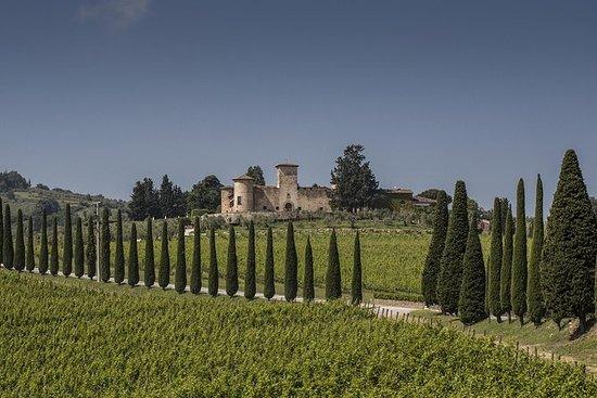 Experiencia del vino en Chianti...