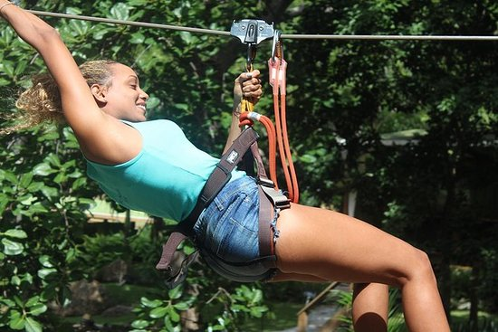 Fly Zone Treetop Adventure bij ...