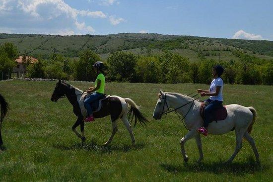 Paardrijden Dorp Goranci