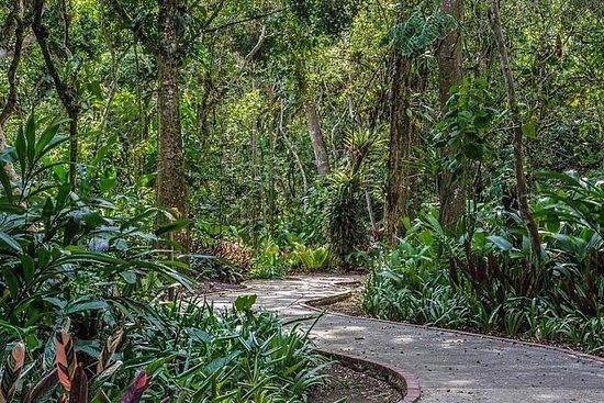 Jardim Botânico de Lankester...
