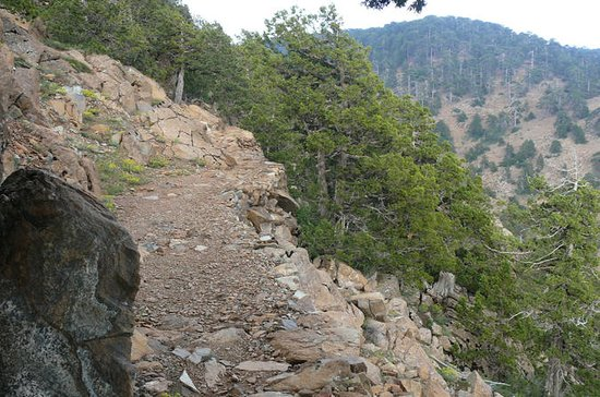Top Zypern Walking Trip (Troodos ...
