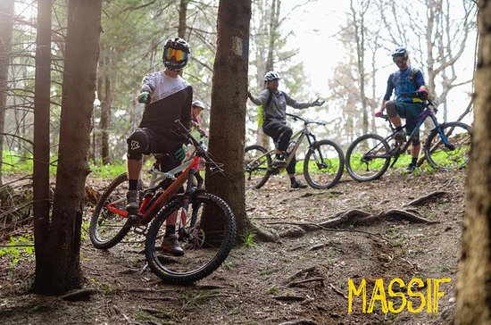 Esperienza di Mountain Bike Brasov