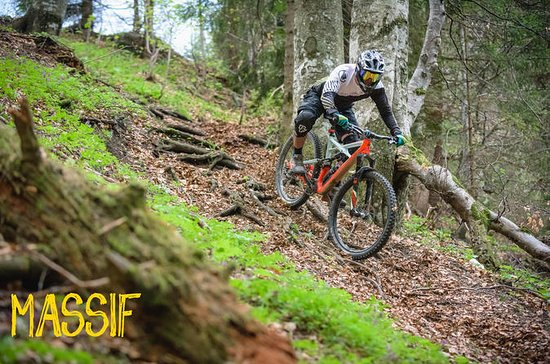 Mezza giornata per la mountain bike