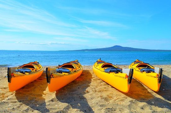 Day sea kayak tur Rangitoto Island