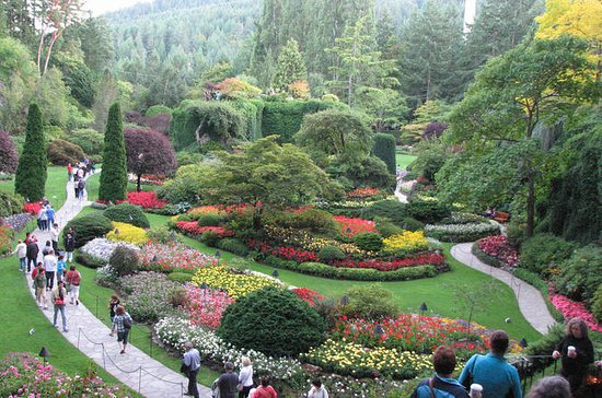 3-timers privat tur: Butchart Gardens...