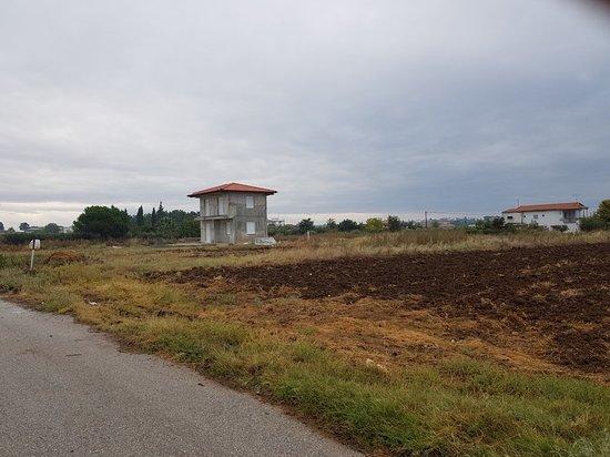Flogita, Hellas: 20180930_123223_large.jpg