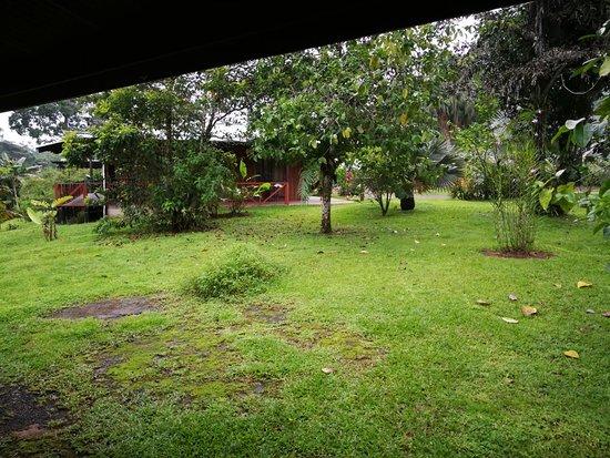 Boca Tapada, Costa Rica: IMG_20180803_061658_large.jpg
