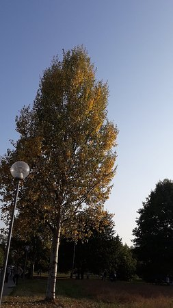 Parco Brianza Centrale: 20180930_173506_large.jpg