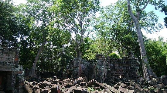 Ảnh về Banteay Chhmar