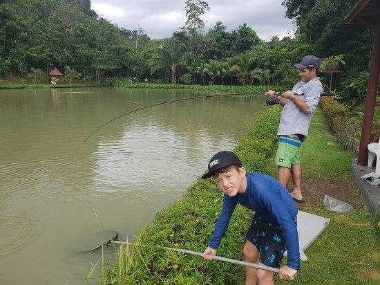 Khao Thong, Thailand: 20180922_132721_011_large.jpg