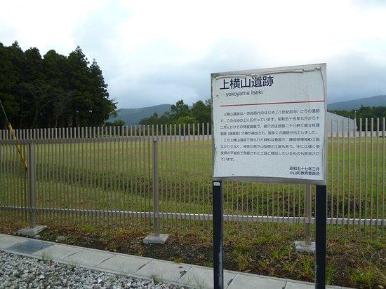 Kamiyokoyama Remains