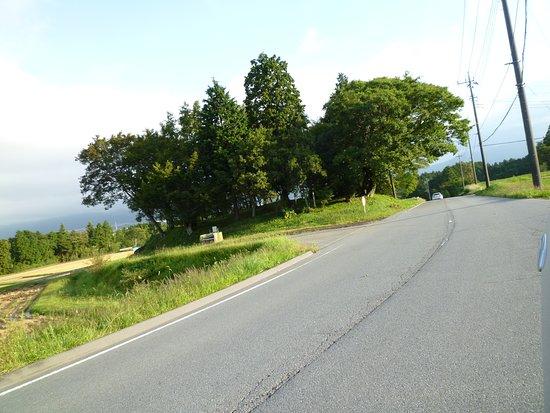 Shingenzuka