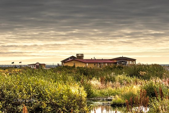 Seal River Heritage Lodge from near incoming airstrip.