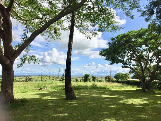 Tsavo, Κένυα: Garden