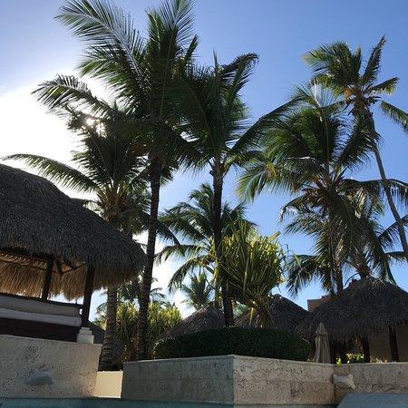 Excelent Trip to Paradisus Punta Cana