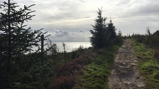 Whiting Bay, UK: Beautiful coastal path