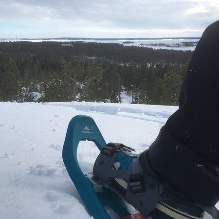Kalix, Suécia: Snowshoe walk