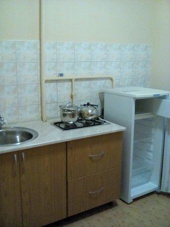 Ефремов, Россия: Кухня в номере люкс