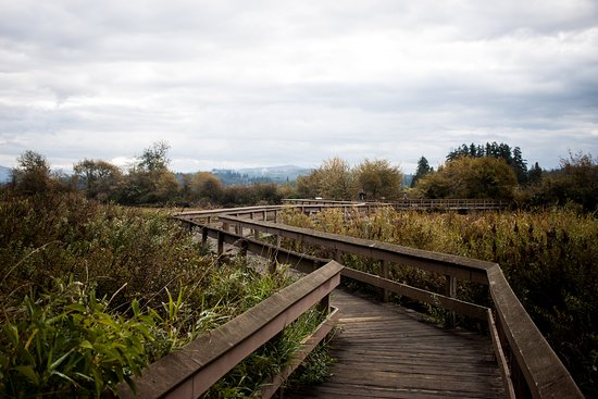 Castle Rock, WA: Boardwalk across the highway from the park