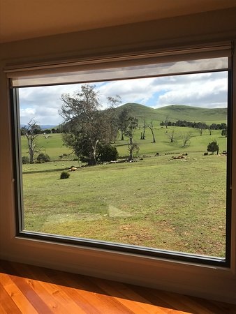 Hamilton, Australia: The huge picture window in Echidna Studio.