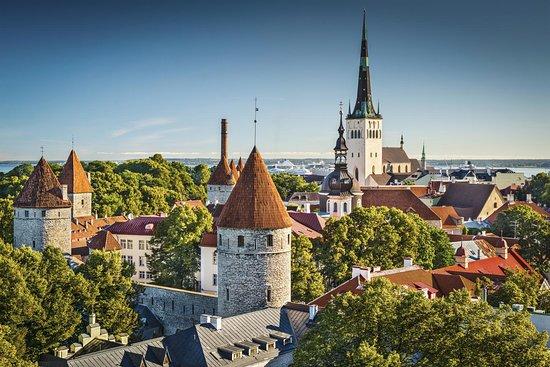 Tallinn Private Tour Guide