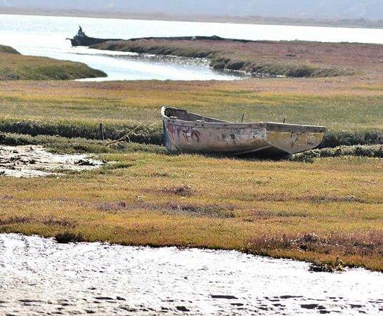 Lutzville, Afrika Selatan: Olifantsriver influx in ocean
